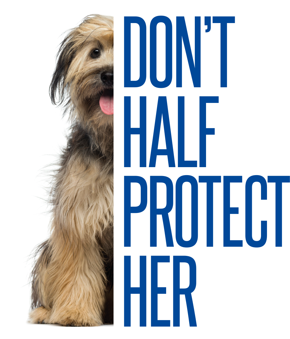 A front facing dog sitting with her tongue out. Only half of the dog is visible, the right side of her is cut away and in its place the words Don't Half Protect Her.