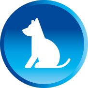 White puppy icon in blue circle