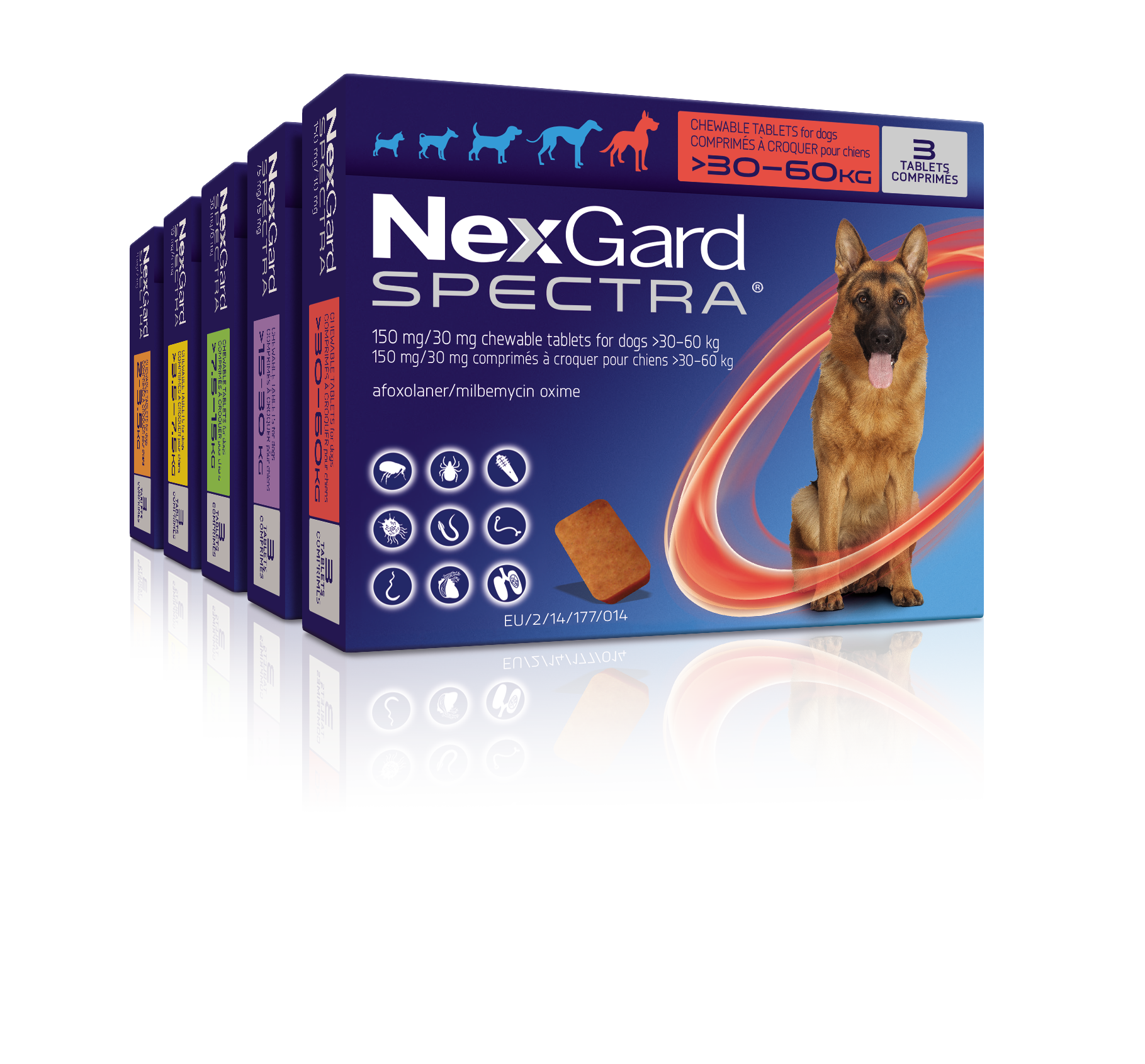 NexGard Spectra range pack shot with Do It Right, Do It Monthly blue circular interruptor and the words Fleas, Ticks, Lungworm, Roundworm around the edge of the circle.